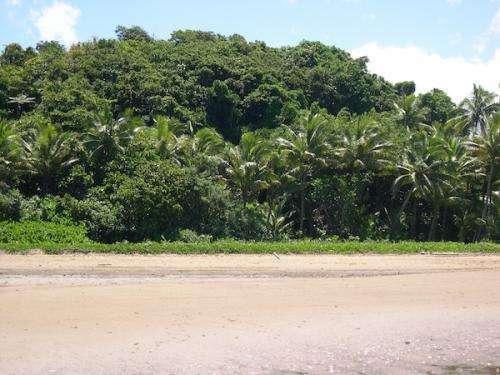 Fiji Islands Resort Real Estate